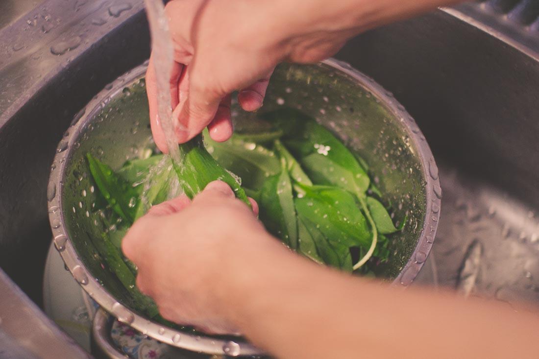 Důkladné mytí listů medvědího česneku
